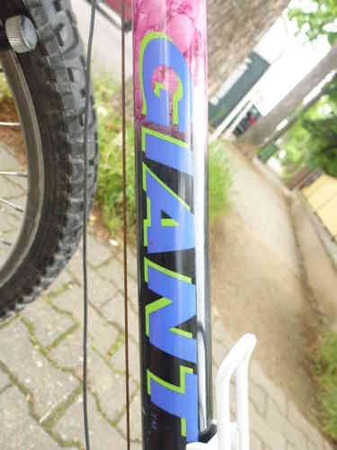 21 Gang GIANT 26 Zoll RH 54